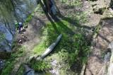 Angeln und Bootfahren in der Wesenitz unterhalb des Bungalows