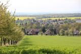 Kirschallee in Mühlsdorf